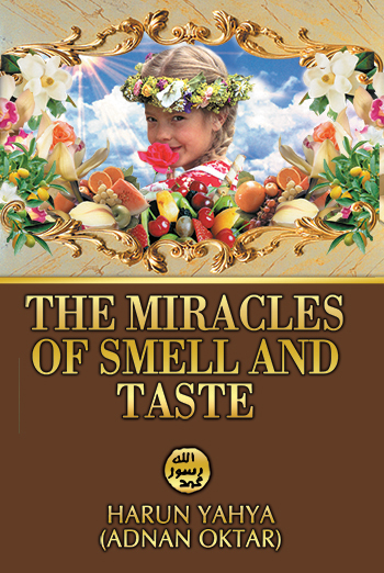 The Taste of Miracles