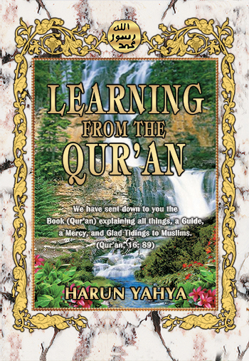 Learning Fromn The Quran
