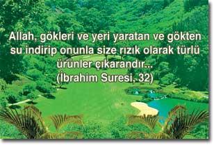 ayetler11
