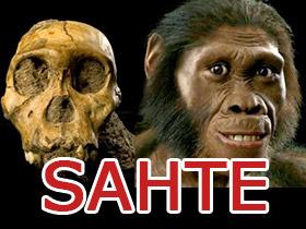 Australopithecus sediba hakkındaki iddialara cevaplar ile ilgili görsel sonucu