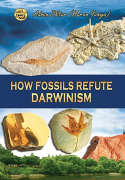 How Fossils Overturned Evolution