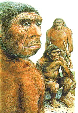 neandertal, imagination of evolutionists