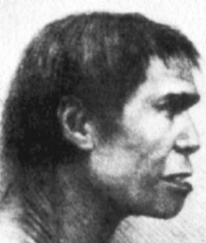 A depiction of Piltdown Man, based on the fraudulent fossil
