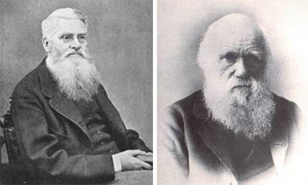Alfred Russel Wallace and Charles Darwin