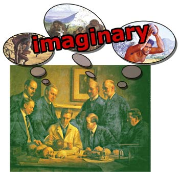imagination, fact, evolutionist