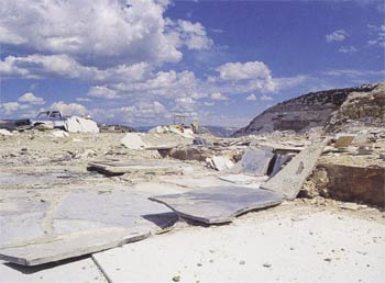 A fossil research area in Wyoming