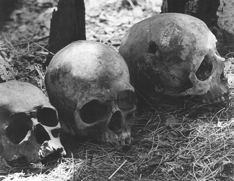 These skulls, taken from a mass grave in Chelyabinsk, belong to people killed by a bullet in the head by Stalin's secret service (NKVD) You can see the bullet hole in the skull on the right.