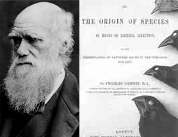 Charles Darwin, Origin of Species