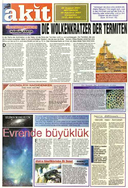akit newspaper