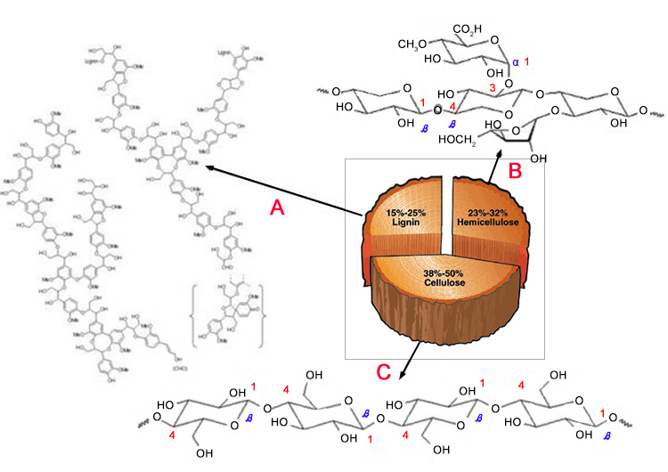 chemical structure of wood