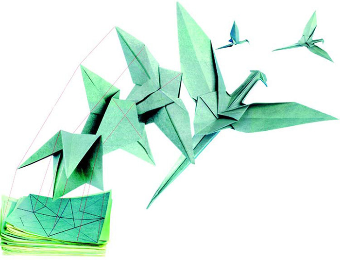origami, proteins